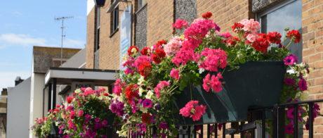 flowers outside 37 Church Street